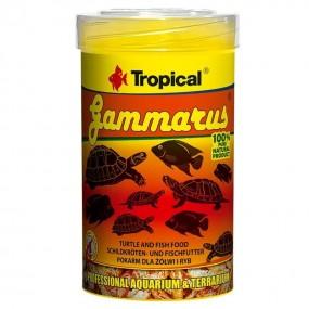 TROPICAL GAMMARUS 100ML/12GR