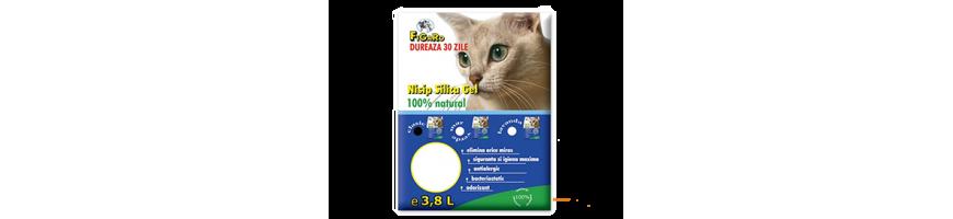 Igiena pisici